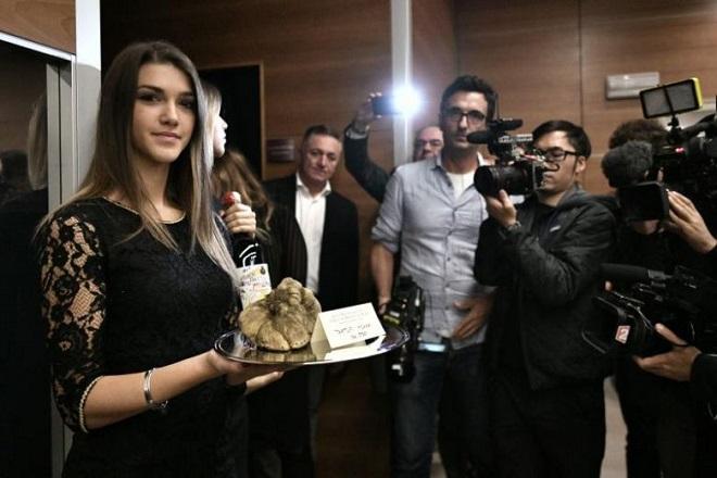 Λευκή τρούφα της Άλμπα πωλήθηκε έναντι 85.000 ευρώ
