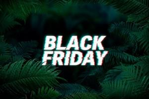 Jungle_Black Friday_GERMANOS
