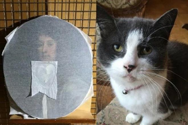 padme cat painting photo-twitter