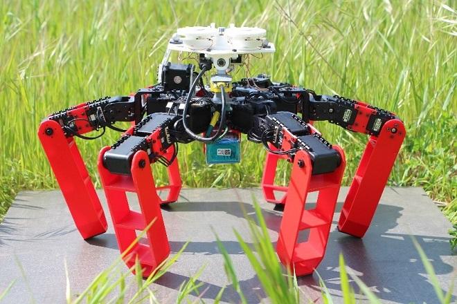 Ρομπότ χωρίς GPS - Πηγή Julien Dupeyroux-ISM (CNRS-AMU)