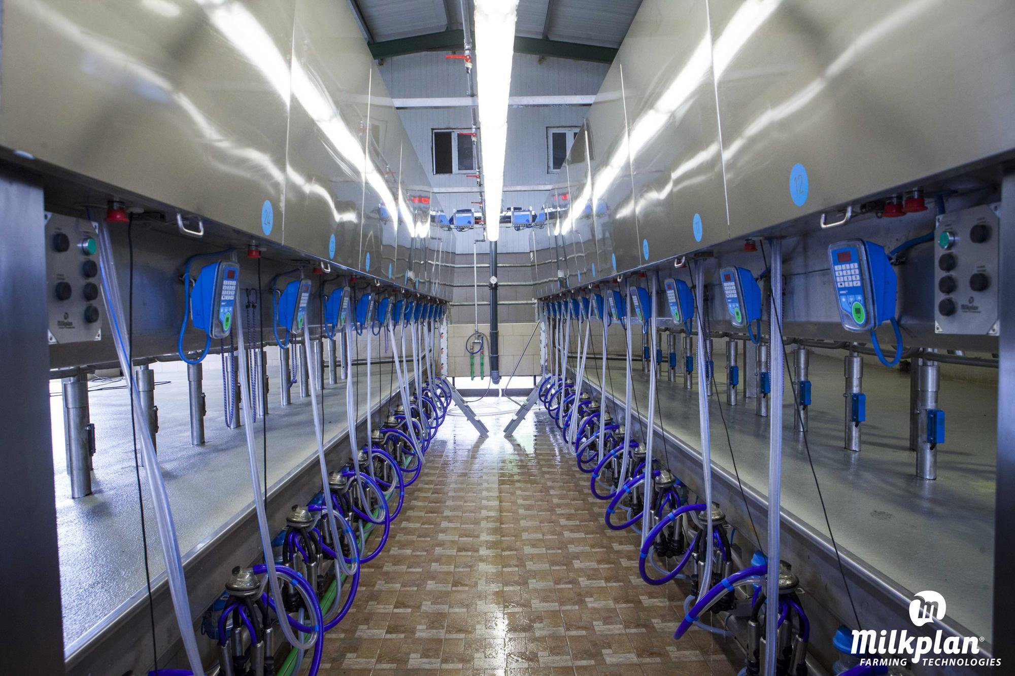 Milkplan: Η βορειοελλαδίτικη επιχείρηση που φέρνει την ρομποτική στην κτηνοτροφία