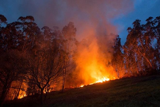 Πολύ υψηλός ο κίνδυνος πυρκαγιάς για σήμερα- Ποιες περιοχές βρίσκονται στο επίκεντρο