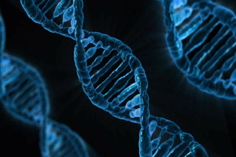 Είναι γεγονός: O πρώτος έμβιος μικροοργανισμός με DNA 100% ανασχεδιασμένο από ανθρώπους