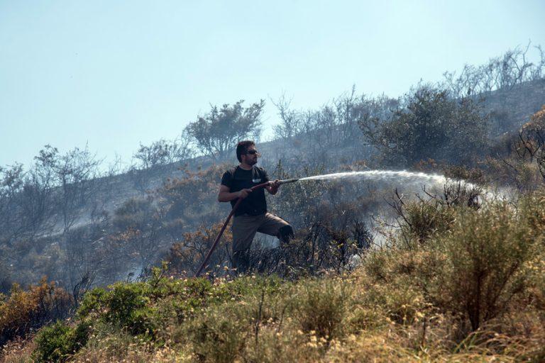 Πυρκαγιά σε δασική έκταση στον Κιθαιρώνα Αττικής
