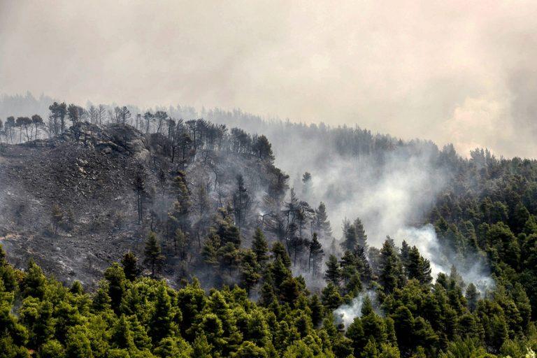 Ανεξέλεγκτη μαίνεται η φωτιά στην Εύβοια – Εκκενώθηκαν χωριά (Φωτογραφίες)