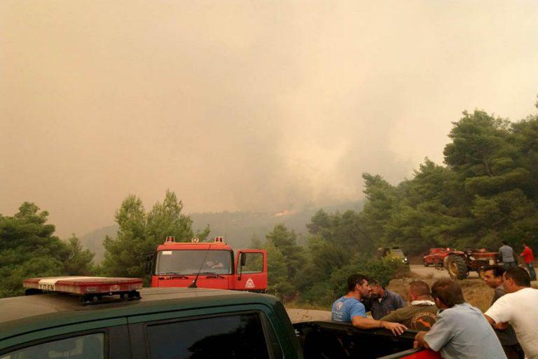 Σε εξέλιξη βρίσκεται πυρκαγιά στο Πεταλίδι Μεσσηνίας – Σημειώθηκαν 55 δασικές πυρκαγιές σε 24 ώρες