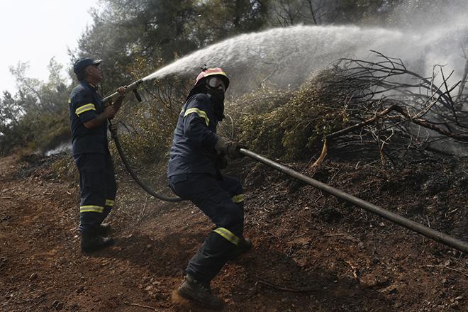 Υπό μερικό έλεγχο η πυρκαγιά στο Διόνυσο Αττικής