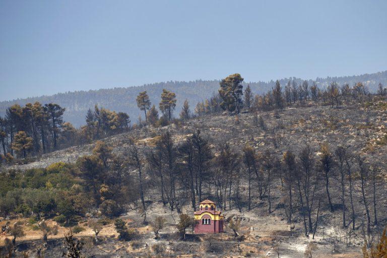 Τί κάηκε στην Εύβοια – Σε κατάσταση συναγερμού η Πυροσβεστική