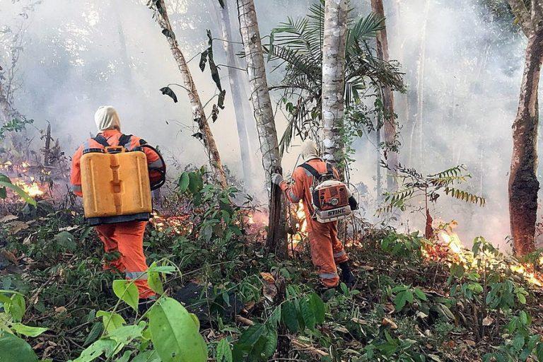 Στο έλεος της πύρινης λαίλαπας ο Αμαζόνιος – 2.000 νέες εστίες φωτιάς