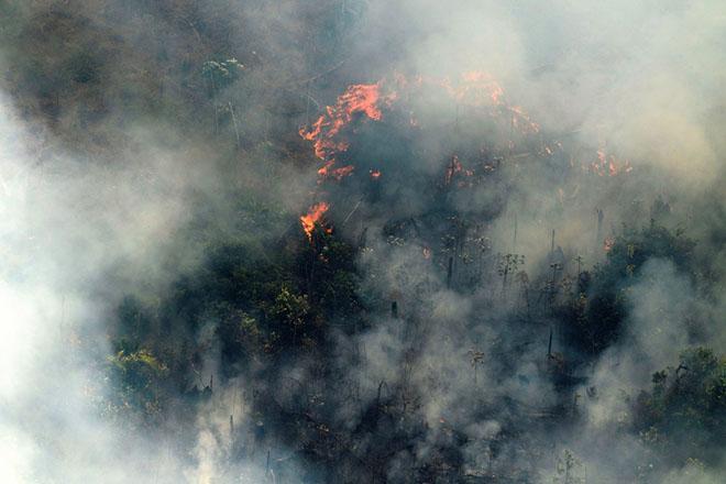 Ο φλεγόμενος Αμαζόνιος και η στάση του Μπολσονάρου καταστρέφουν την εικόνα της Βραζιλίας