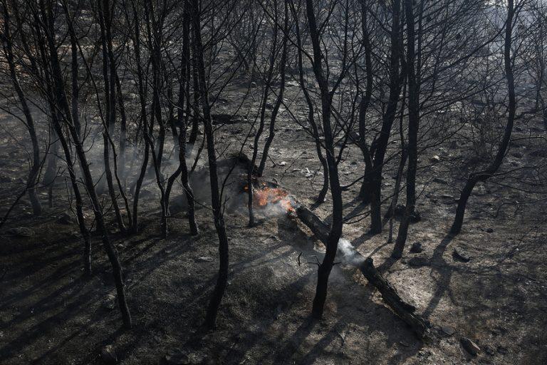 Υπό έλεγχο η πυρκαγιά στην Ερμιονίδα- Συνεχίζονται οι προσπάθειες κατάσβεσης