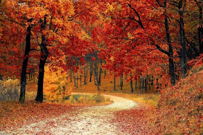 Σήμερα ξεκινά επισήμως το φθινόπωρο