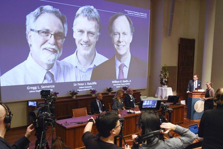 Σε τρεις επιστήμονες το φετινό Νόμπελ Ιατρικής