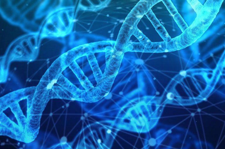 Κινέζοι ερευνητές δημιούργησαν φορητό σύστημα «τσέπης» για την ανίχνευση DNA