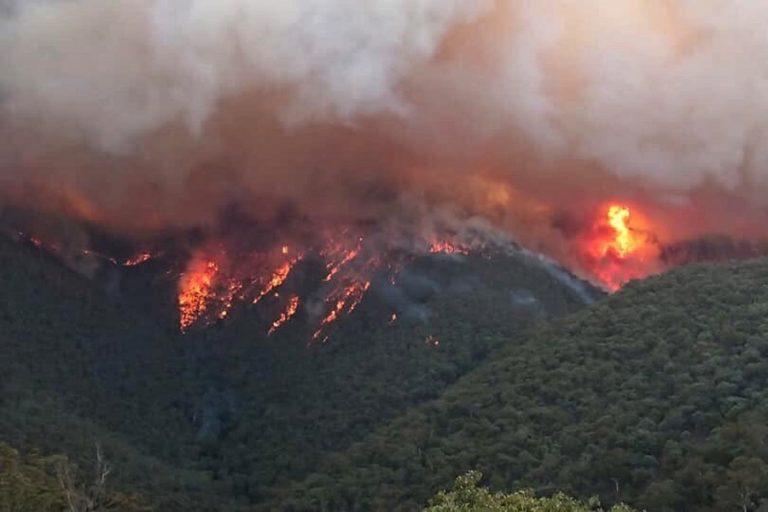 Αυστραλία: Υπό έλεγχο η μεγαλύτερη πυρκαγιά που μαίνεται στη χώρα – «Βουτιά» στη δημοτικότητα του πρωθυπουργού