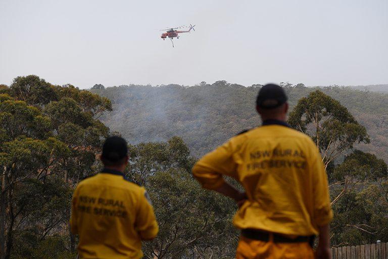 Ασύλληπτη τραγωδία στην Αυστραλία: Πάνω από 1 δισ. ζώα έχασαν τη ζωή τους από τις φονικές πυρκαγιές