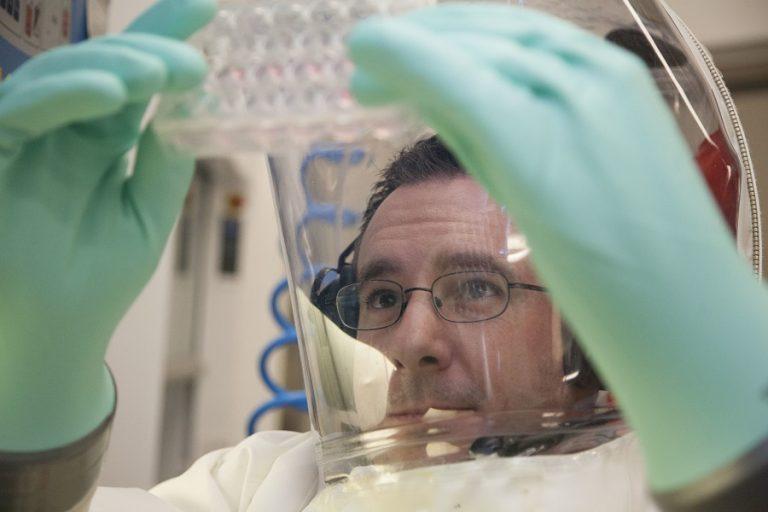 Επιστήμονες βρήκαν πώς αντιδρά το ανοσοποιητικό στον κορωνοϊό