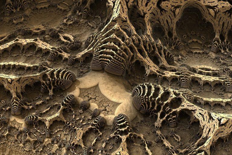 Βρέθηκε το αρχαιότερο κρανίο «Homo erectus»