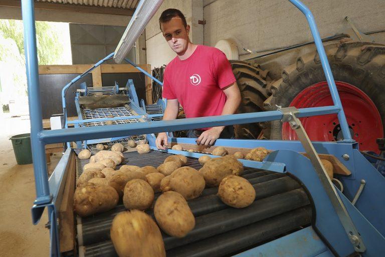 Οι αγρότες λένε στους Βέλγους να τρώνε περισσότερες πατάτες και ο λόγος είναι σοβαρός