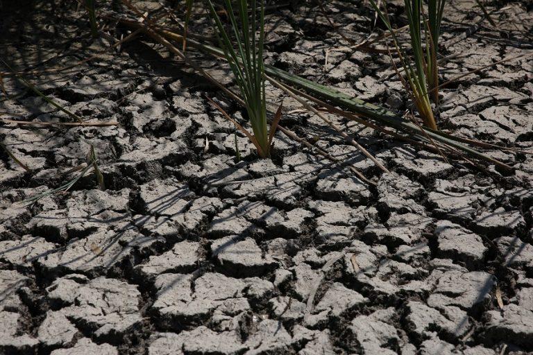 Το National Geographic προειδοποιεί: Υπάρχει κίνδυνος ερημοποίησης του 30% της Ελλάδας