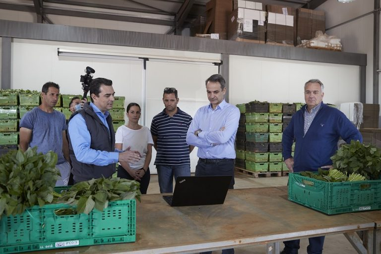 Σε πρότυπη αγροτική μονάδα στον Αυλώνα ο Μητσοτάκης: Θα στηρίξουμε τους παραγωγούς για να αντιμετωπίσουν τις επιπτώσεις της πανδημίας