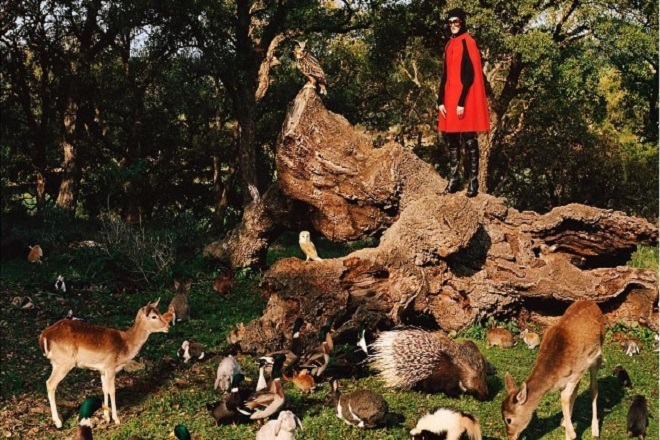 Ύμνος στη φύση είναι η νέα συλλογή του οίκου Gucci