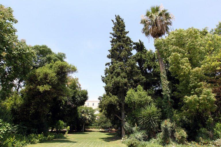 Κονδύλια 2,12 εκατ. ευρώ για την αποκατάσταση του Εθνικού Κήπου και του Λόφου Φιλοπάππου