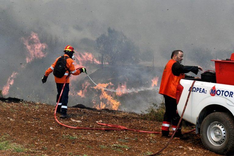 Συνεχίζεται η μάχη για τον έλεγχο της πυρκαγιάς στις Κεχριές (Φωτογραφίες)