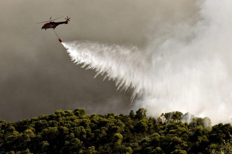 Συνελήφθη ένας άνδρας για τη φωτιά στην Ηλεία