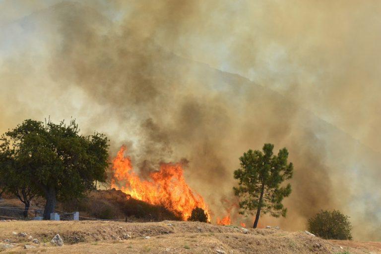 Εκτός κινδύνου οι Μυκήνες από τη φωτιά- Η πρόληψη έσωσε τον αρχαιολογικό χώρο