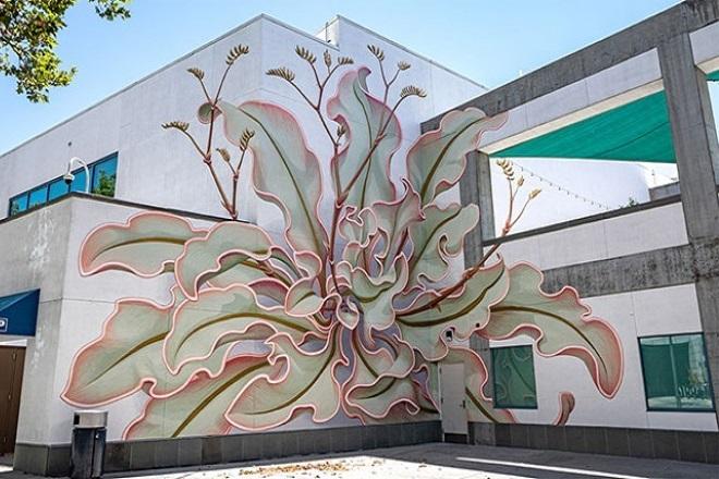 Ένα λουλούδι «ανθίζει» στην επιφάνεια έξι τοίχων στο Σαν Χοσέ της Καλιφόρνια
