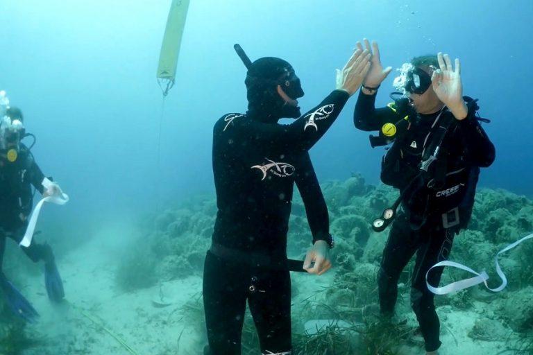 Το εντυπωσιακό βίντεο-αφιέρωμα της Deutsche Welle στο υποβρύχιο μουσείο της Αλοννήσου