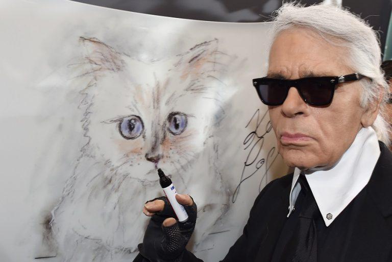 Η γάτα του Καρλ Λάγκερφελντ σχεδιάζει… έπιπλα για κατοικίδια