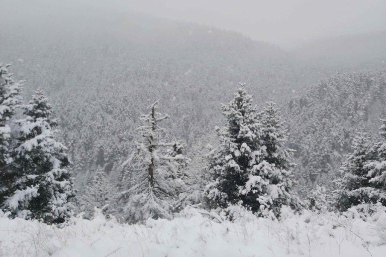 Για ψυχρή εισβολή προειδοποιούν οι μετεωρολόγοι- Έρχεται χιονιάς με καταιγίδες και παγετό