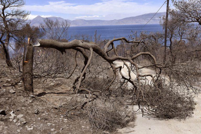 Στάχτη 20 χιλιάδες στρέμματα δάσους από την πυρκαγιά που ξεκίνησε στον Σχίνο Λουτρακίου