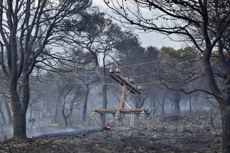 Πάνω από 40.000 στρέμματα έγιναν στάχτη από τη φωτιά στα Γεράνεια Όρη
