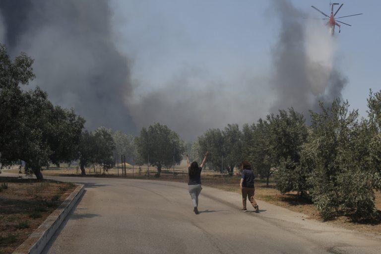 Σε επιφυλακή η πυροσβεστική σε όλη τη χώρα – Μόνο σε μια μέρα ξέσπασαν 51 πυρκαγιές