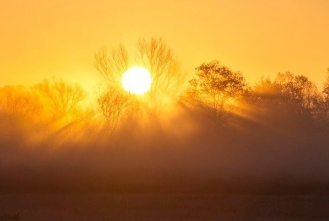 Ο πλανήτης «φλέγεται»: Η κλιματική κρίση, τα Mega Trends και τι να περιμένουμε στο μέλλον