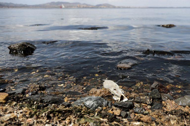 Πετρελαιοκηλίδα από τη Συρία απειλεί την Κύπρο