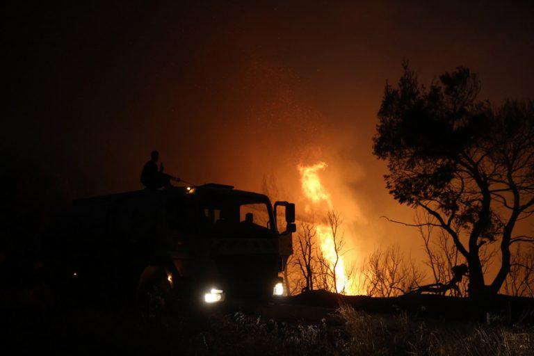 Κάηκε μεγάλο μέρος του κτήματος Τατοΐου- Γλίτωσαν τα ιστορικά κτίρια και τα έργα τέχνης