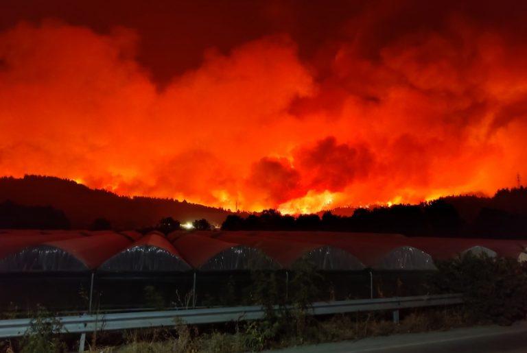 DW για Ελλάδα, Τουρκία, Ιταλία: Οι δασικές πυρκαγιές δεν οφείλονται μόνο στην κλιματική αλλαγή