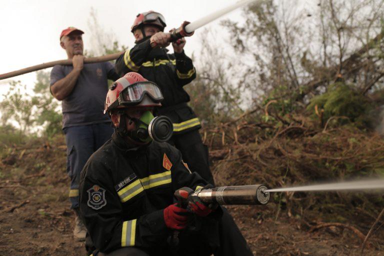 Πυρκαγιά στα Βίλια: Καλύτερη η κατάσταση, επιχειρούν δυνάμεις της πυροσβεστικής σε όλη την περίμετρο
