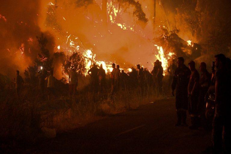 Συναγερμός στην Αρκαδία: Προς το χωριό Νεοχώρι κινείται το μέτωπο της πυρκαγιάς