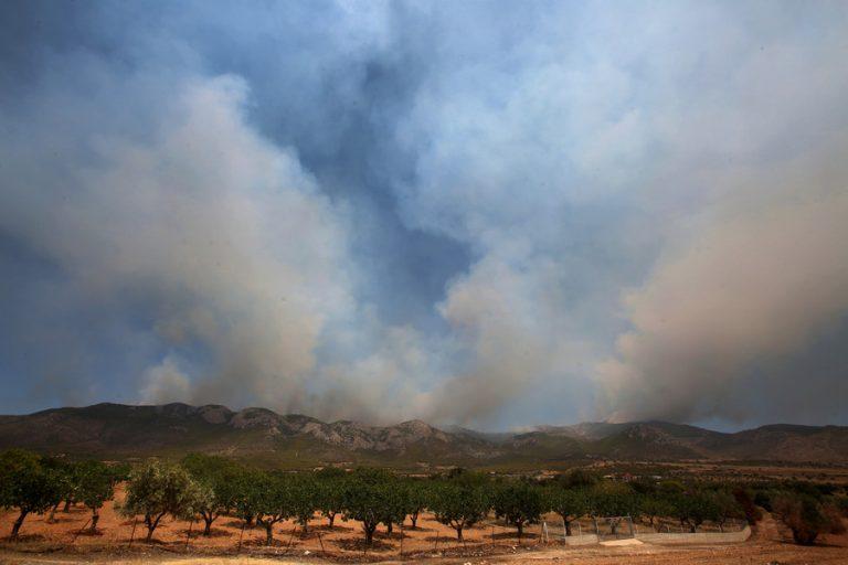 Στο όρος Πατέρας, προς το Πεδίο Βολής Μεγάρων, το μεγάλο μέτωπο της πυρκαγιάς στα Βίλια