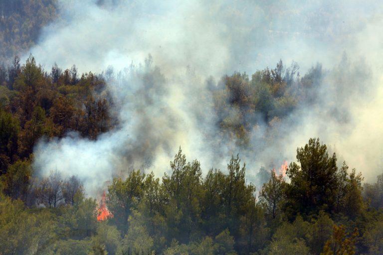 Βελτιωμένη η κατάσταση με τη φωτιά στα Βίλια- Μάχη με τις αναζωπυρώσεις
